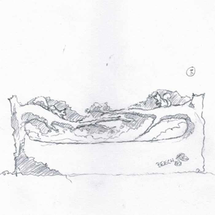Drawing of red squirrel bench