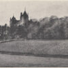 The Castell Coch Vineyard